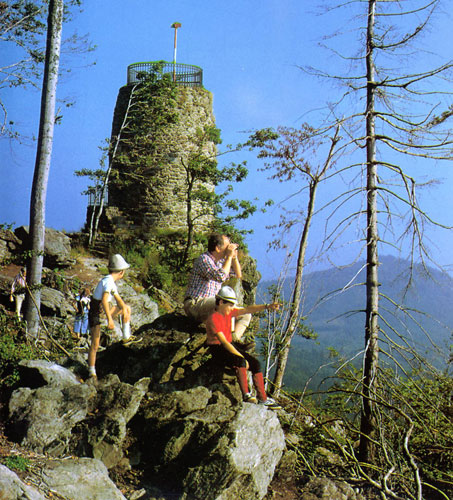 Aussichtsturm am Hirschenstein Bayrischer Wald