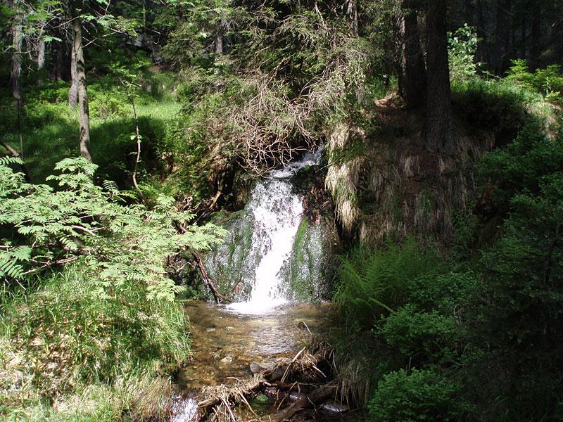Wanderwege im Bayer. Wald